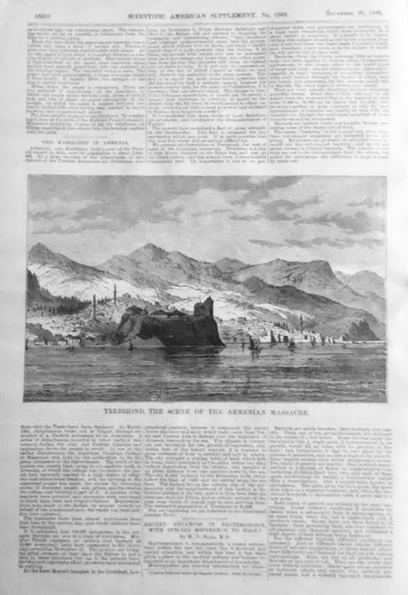 The article page