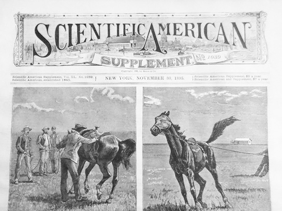 The flag of the Scientific American