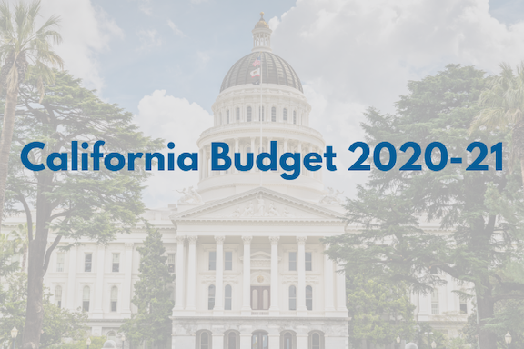 CA Budget 20-21 feature